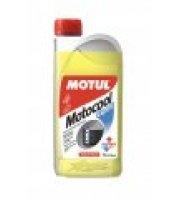 MOTUL Motocool Expert (1L/kg)